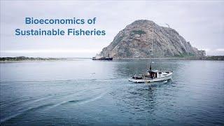 Bioeconomics of Sustainable Fisheries