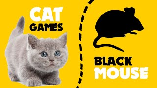 CAT GAMES black MOUSE HUNT ★ games on screen for cats