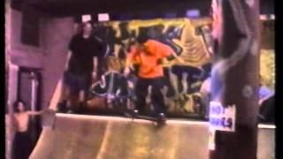Skank Skates Volume 1