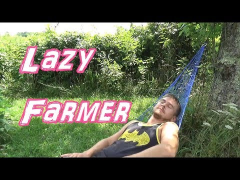 Back To Eden Gardening - The EASY and LAZY Way To Grow Food!!