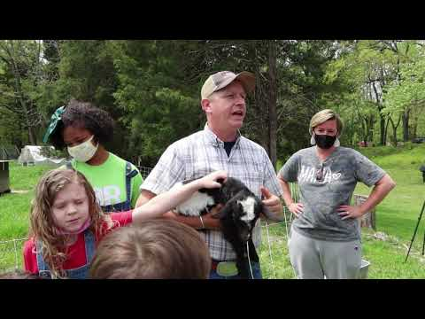, title : 'Sheraton Park Farm Tour - Part One Chickens Turkeys Goats and Sheep!