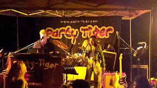 PARTY TIGER aus Österreich video preview