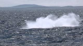 Expedition Russlands Ferner Osten mit Silversea