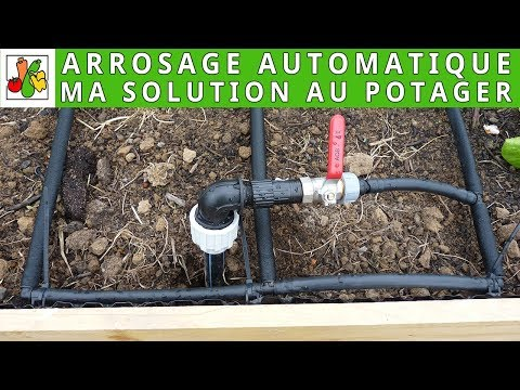Solution d'arrosage automatique au potager