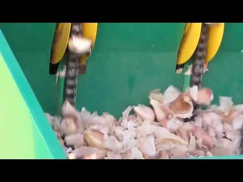 Garlic Planter at Best Price in India