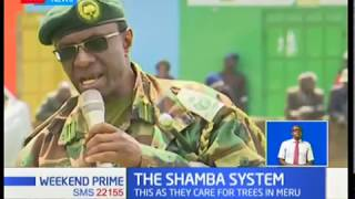 The Shamba System that is transforming forest cover initiative in Meru