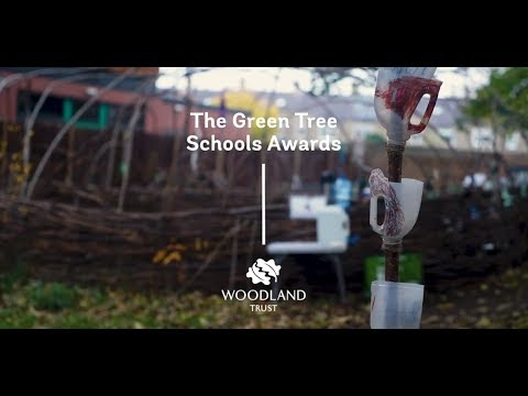 Celebrating 10 years of the Green Tree Schools Award