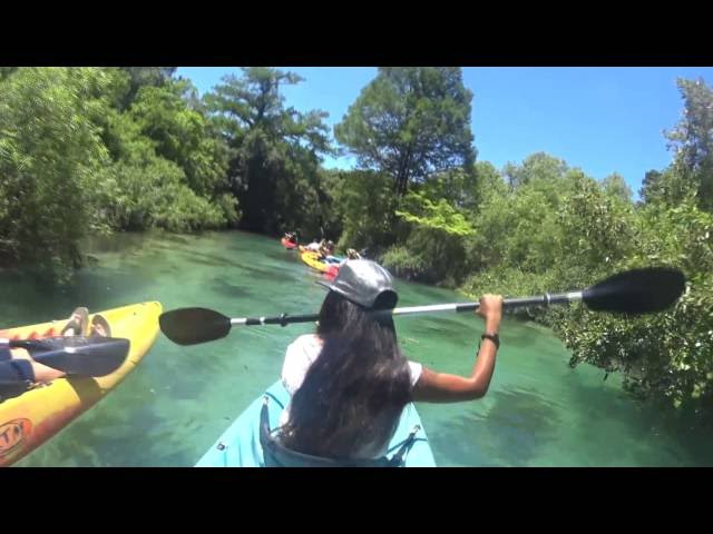 Epic Florida Paradise, Kayaking with Manatees - Weeki Wachee Springs FL