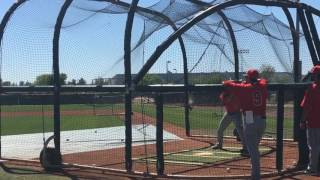 Matt Thaiss takes swings in Tempe, Ariz last week.
