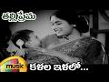 NTR Hit Songs   Thalli Prema Movie Video Songs   Kalalo Ilalo Full Video Song   Savitri