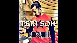 Garry sandhu Live || Teri Soh || New Song 2016