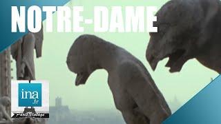 Les secrets et les coulisses de Notre-Dame | Archive INA