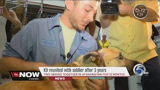 K9, soldier who served together in Afghanistan reunited at Cleveland airport