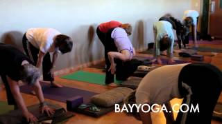 Bay Area Yoga Studio