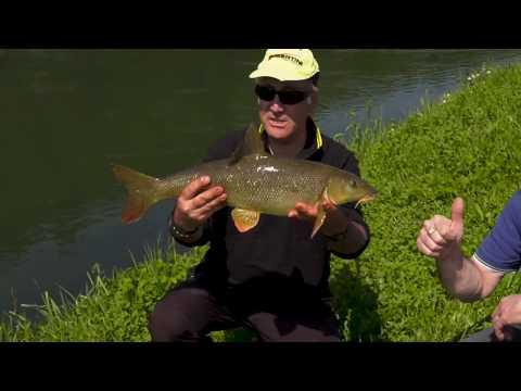 La pesca in cattura di una picca per guardare il video