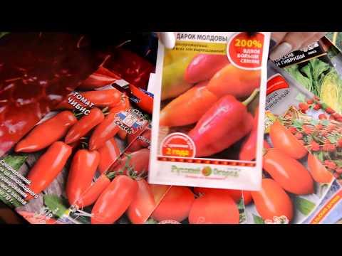 Опять новые семена ! / Не пускайте меня в магазин!
