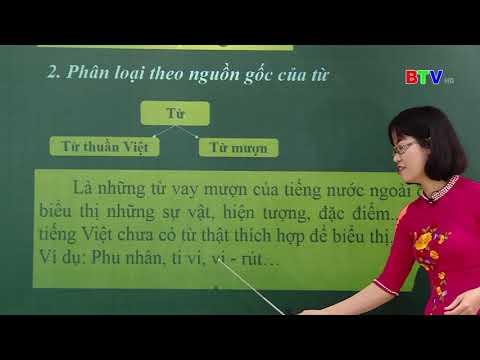 BTV Lớp 9 Môn Ngữ Văn Số 1 Ôn tập Tiếng Việt (NGÀY 20.3.2020)