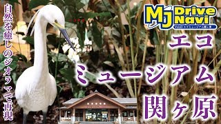 岐阜県マイナー観光地めぐりの旅 ~エコミュージアム関ヶ原編~ vol.29