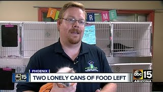 Valley rescue in desperate need of cat food donations