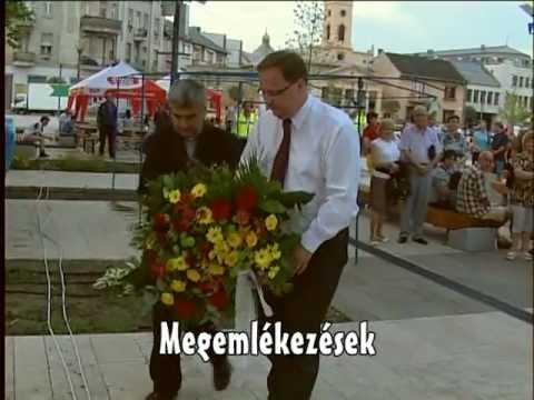 A polgármester tevékenysége