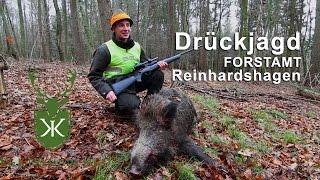Drückjagd Im Forstamt Reinhardshagen K&K Premium Jagd