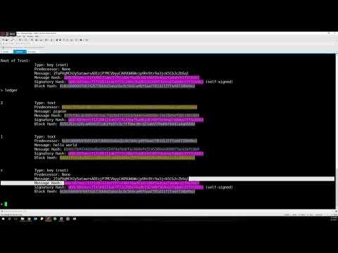 Privledge Demo Video