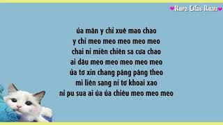 [PHIÊN ÂM TIẾNG VIỆT] HỌC TIẾNG MÈO KÊU(学猫叫) - Tiểu Phan Phan ft Tiểu Phong Phong