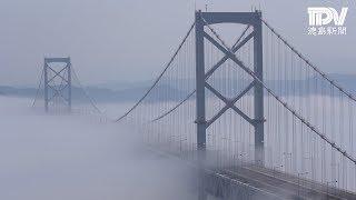 鳴門海峡で濃霧発生大鳴門橋ベールに包む