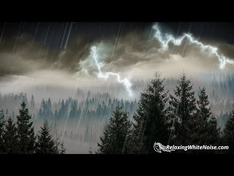 10 Hours Rain & Thunder | Rainstorm Sounds for Sleep, Studying or Relaxation | Nature White Noise