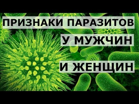 Какие вредные паразиты живут в человеке