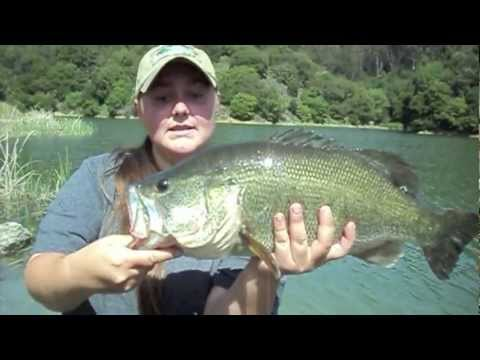 """Whopper Largemouth Bass Caught At Lake Chabot!"" By Verdugoadventures"