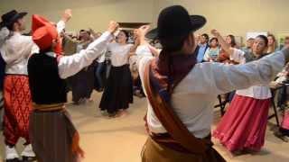 preview picture of video 'Escuela de Arte de Gral. Madariaga - Muestra de Fin de Año - Danzas Folklóricas'
