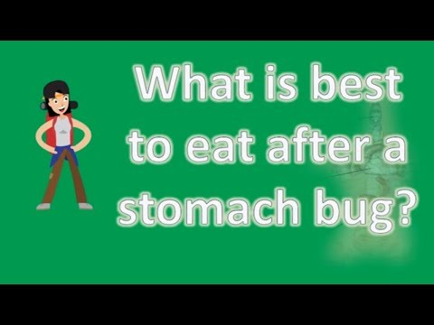 What is best to eat after a stomach bug ? | Best and Top Health FAQs