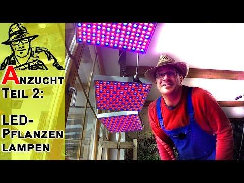 Anzucht Teil 2: LED Pflanzenlampen