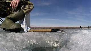 Рыбалка в каслях на выходные где клюет