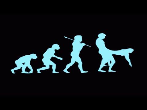Evolution Of Sex - Documentary
