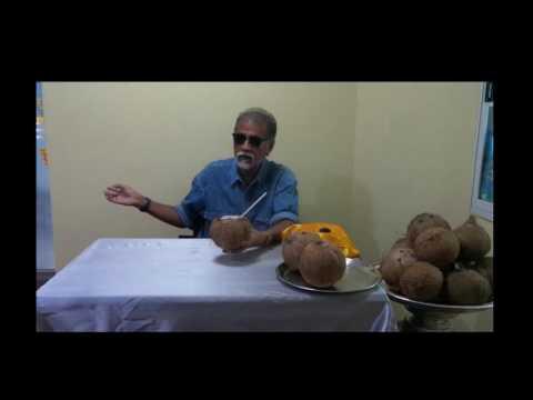 Psyllium ในการรักษาโรคสะเก็ดเงิน