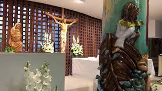 Felicitación de la Pascual 2019 (y Cirio Pascual)