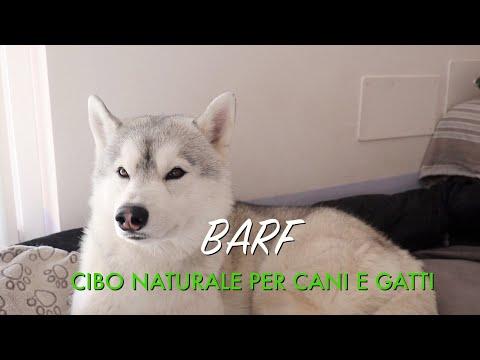 DIETA BARF - Cibo naturale per Cani e Gatti