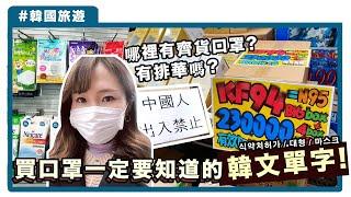 [中字]【韓國排華嗎?】買口罩一定要懂的韓文單字!終於找到齊貨口罩的藥局, 韓國最新出入境管制 | KIMCHIPAT