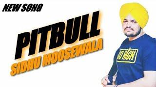 Pitbull(full Song) __ Sidhu Moosewala Ft. - Shree Brar __ New Punjabi Song 2018