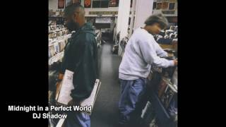 all samples from midnight in a perfect world by DJ Shadow