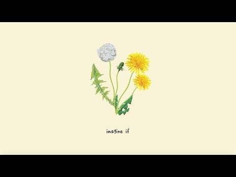 Gnash - Imagine If (lyric Video) Mp3