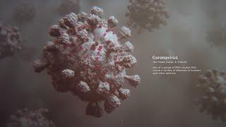 The Coronavirus Outbreak   Random42 Scientific Communication