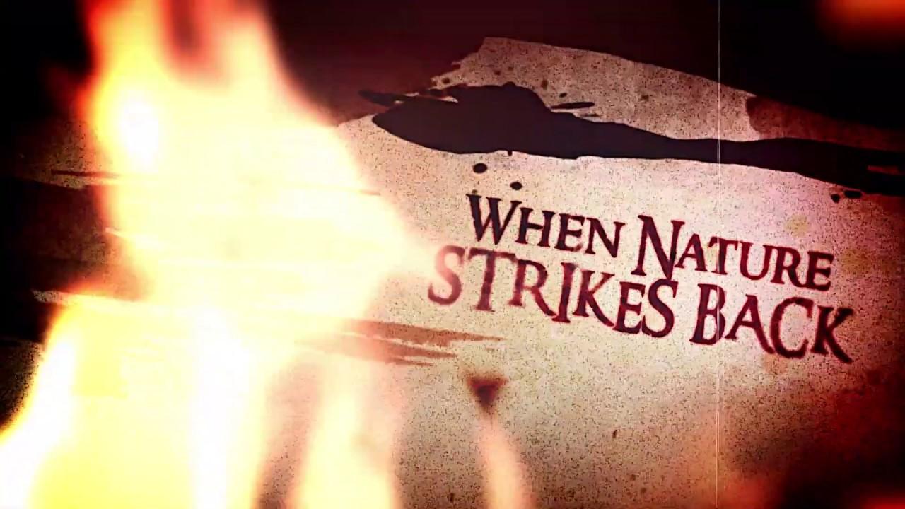 WOLFPAKK - Nature strikes back