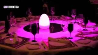 Gambar cover Cavalli Club, Fairmont Hotel, Dubai, UAE - Unravel Travel TV