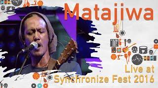 Matajiwa  Live At SynchronizeFest   29 Oktober 2016