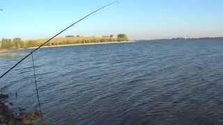 Рыбные места на ириклинском водохранилище