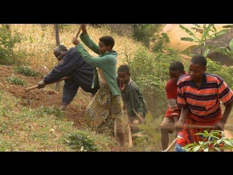 Burundi : la parole aux paysans