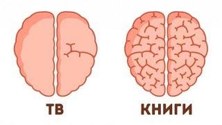 9 Доказательств Того, Что Способности Мозга Можно Развить